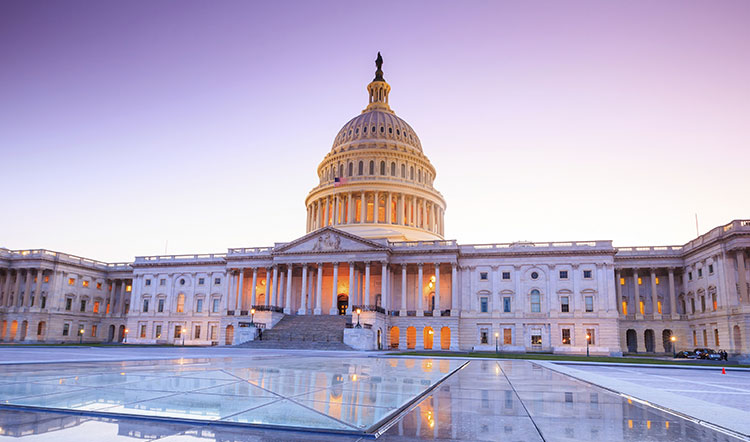 U.S. Capitol Building at Washington, DC